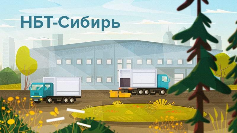 """Кейс. Продвижение товаров производителю """"НБТ-Сибирь"""""""